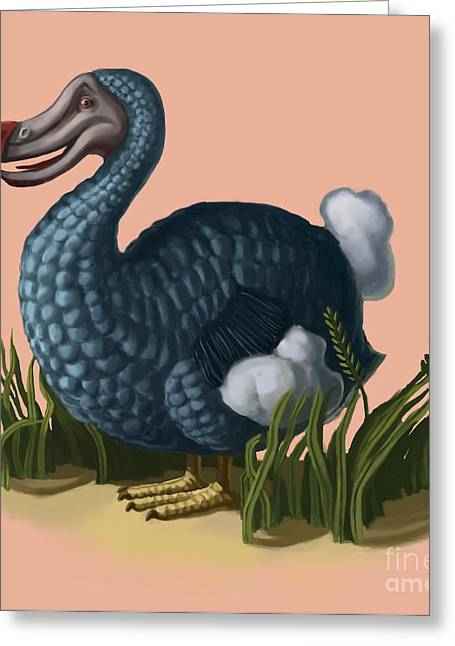 Raphus Cucullatus Greeting Cards - Dodo Bird Greeting Card by Spencer Sutton