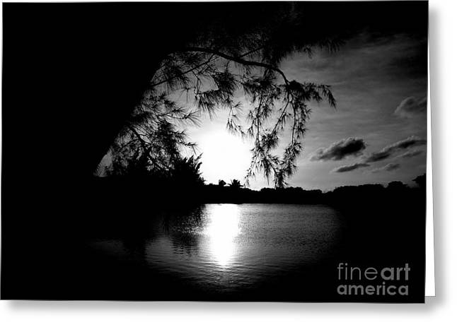 Water Reflecting At Sunset Greeting Cards - End of Day Greeting Card by Amar Sheow