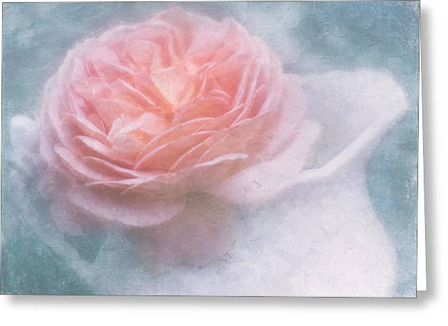Pitcher Of Roses Greeting Cards - English Rose Greeting Card by Cheryl Butler