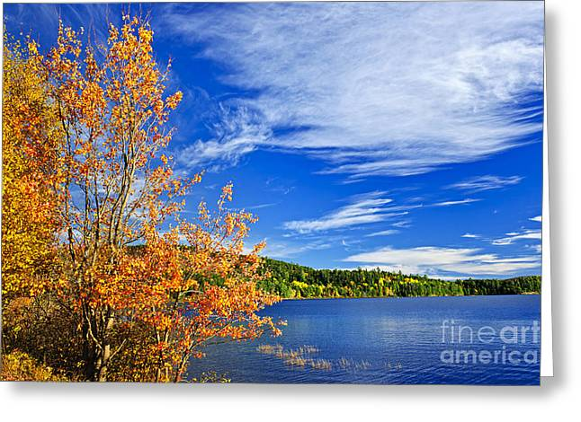 Cloud Greeting Cards - Fall forest and lake Greeting Card by Elena Elisseeva
