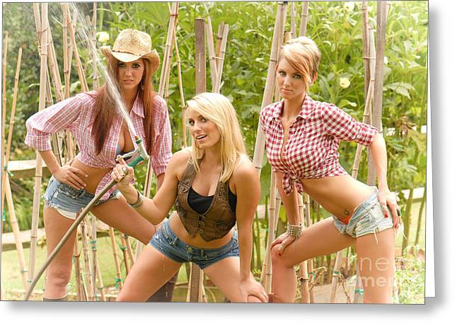 Plaid Shirt Greeting Cards - 3 Farm Girls Greeting Card by Jt PhotoDesign