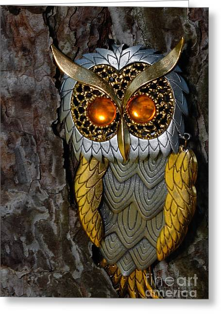 Gold Greeting Cards - Faux Owl with Golden Eyes Greeting Card by Amy Cicconi