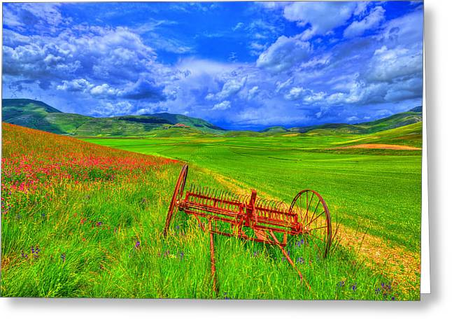 Umbria Greeting Cards - Fields of dreams Greeting Card by Midori Chan