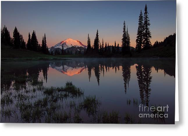 First Light Greeting Card by Mike  Dawson