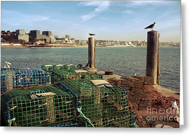 Fishing Traps Greeting Card by Carlos Caetano