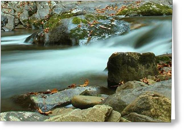 Gatlinburg Tennessee Greeting Cards - Flow Greeting Card by Dan Sproul