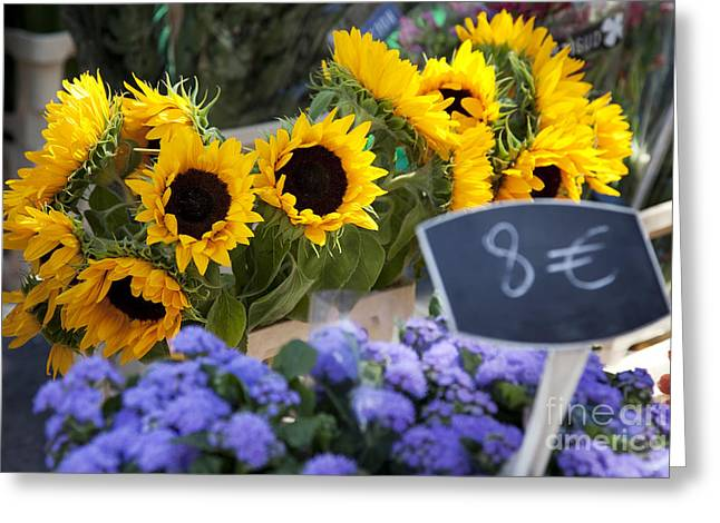 European Flower Shop Greeting Cards - Flowers at Market Greeting Card by Brian Jannsen