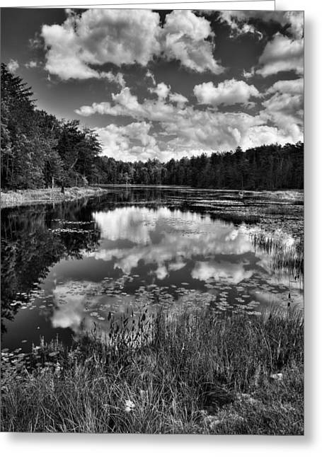 Old And New Greeting Cards - Fly Pond in the Adirondacks Greeting Card by David Patterson