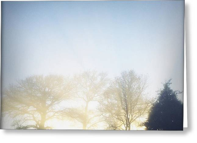 Autumn Photographs Greeting Cards - Foggy morning Greeting Card by Les Cunliffe