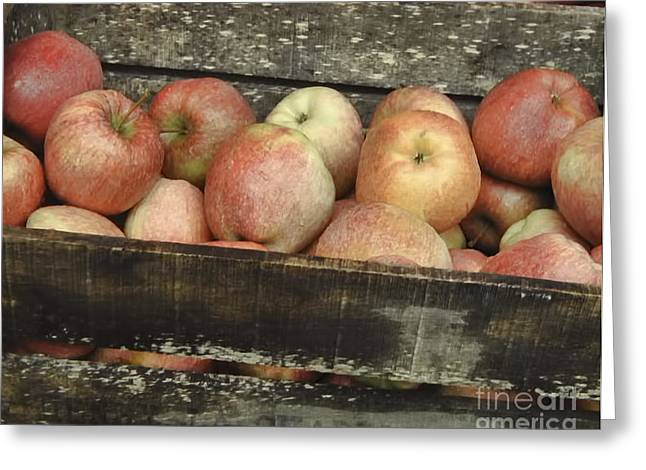 French Laundry Greeting Cards - French Market Apples Greeting Card by Catherine Fenner