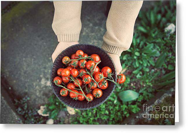 Fresh Tomatoes Greeting Card by Mythja  Photography
