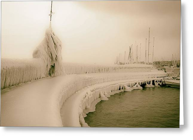 Sailboats Docked Greeting Cards - Frozen Marina Greeting Card by Mountain Dreams