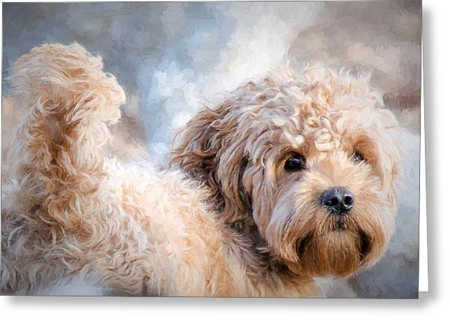 Pet Therapy Greeting Cards - Ganarascan dog Greeting Card by Les Palenik