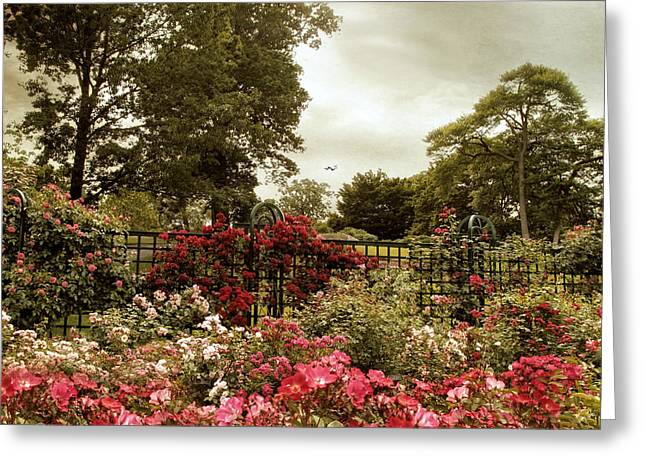 Trellis Greeting Cards - Garden of Roses Greeting Card by Jessica Jenney