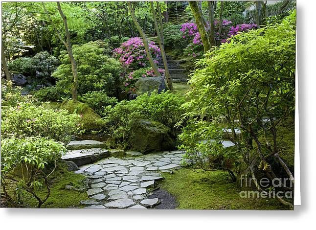 Garden Path Greeting Card by Brian Jannsen