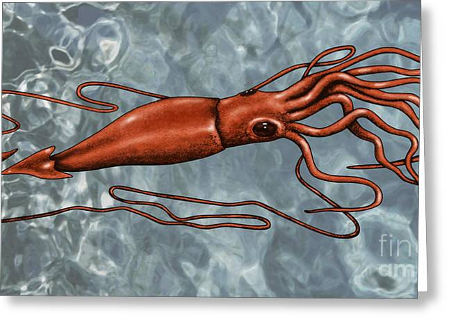 Giant Squid Greeting Cards - Giant Squid Greeting Card by Gwen Shockey