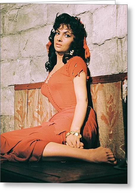 Gina Greeting Cards - Gina Lollobrigida in Solomon and Sheba  Greeting Card by Silver Screen