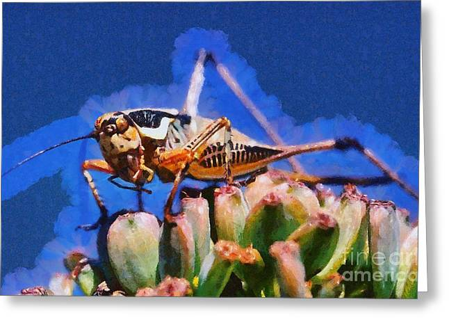 Grasshopper Paintings Greeting Cards - Grasshopper Greeting Card by George Atsametakis