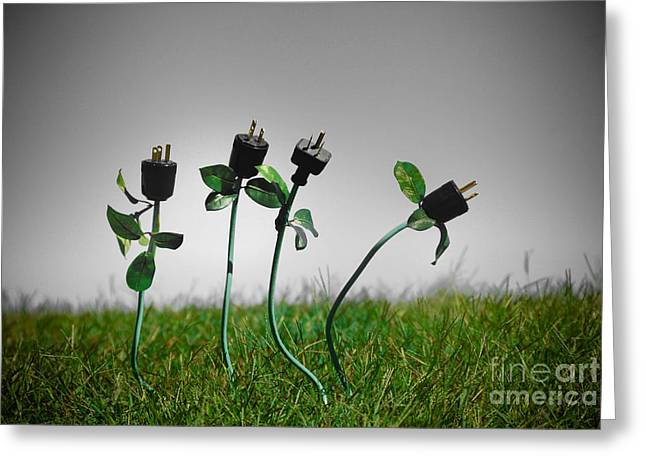 Energy Greeting Cards - Growing Green Energy Greeting Card by Amy Cicconi