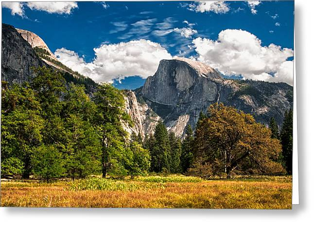 Yosemite Greeting Cards - Half Dome Greeting Card by Cat Connor