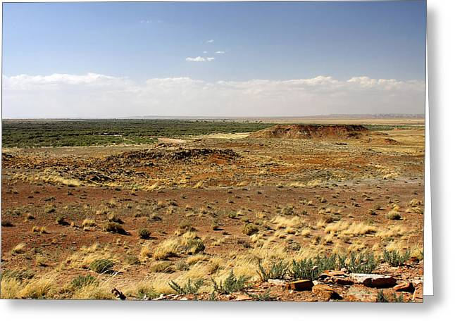 Grassland Greeting Cards - Homolovi Ruins State Park Arizona Greeting Card by Christine Till