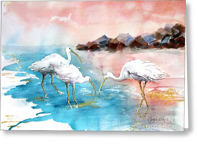 The Nature Center Paintings Greeting Cards - Ibis on the Beach Greeting Card by Joyce Allen