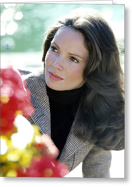 Charlie Greeting Cards - Jaclyn Smith in Charlies Angels  Greeting Card by Silver Screen