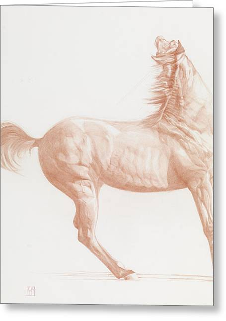 Horse Art Pastels Greeting Cards - Kicking Off Greeting Card by Emma Kennaway
