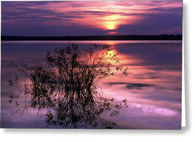 Dusk Greeting Cards - Lake Peno Greeting Card by Anonymous