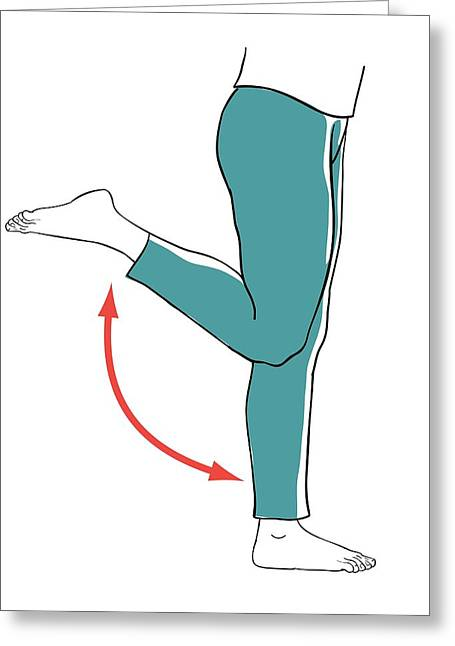 Leg Exercises Greeting Card by Jeanette Engqvist