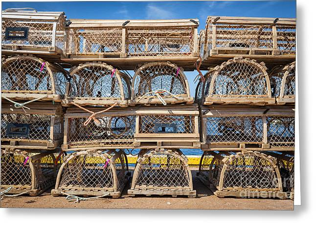 Equipment Greeting Cards - Lobster traps Greeting Card by Elena Elisseeva