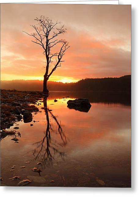 Scotland Wall Art Greeting Cards - Loch Ard Sunrise Greeting Card by Grant Glendinning