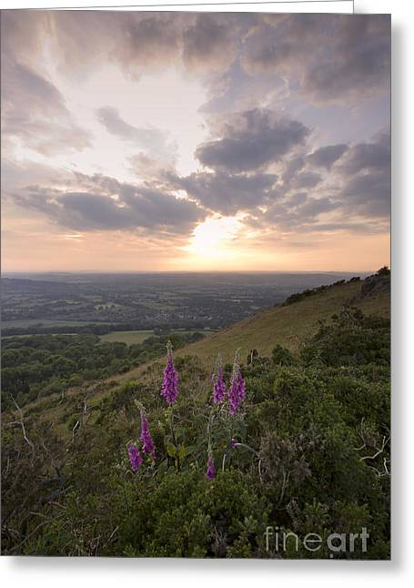 Malvern Hills Greeting Card by Angel  Tarantella