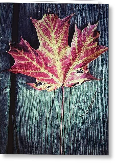 Red Leaves Digital Greeting Cards - Maple Leaf Greeting Card by Natasha Marco
