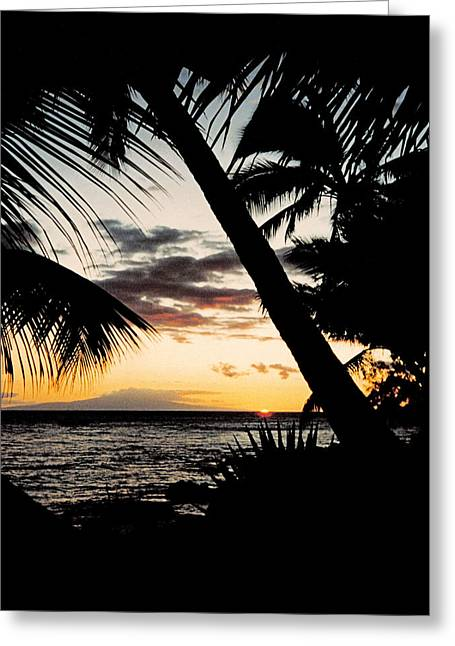 Maui Sunset Greeting Card by J D Owen