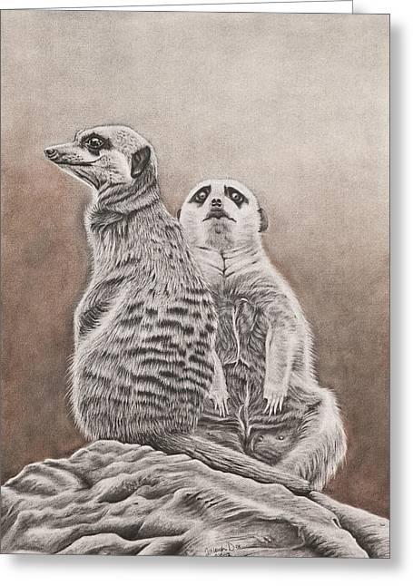 Meerkat Drawings Greeting Cards - Meerkat Greeting Card by Ashleigh Dix