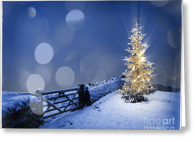 Digitally Created Greeting Cards - Merry Christmas Greeting Card by Edmund Nagele