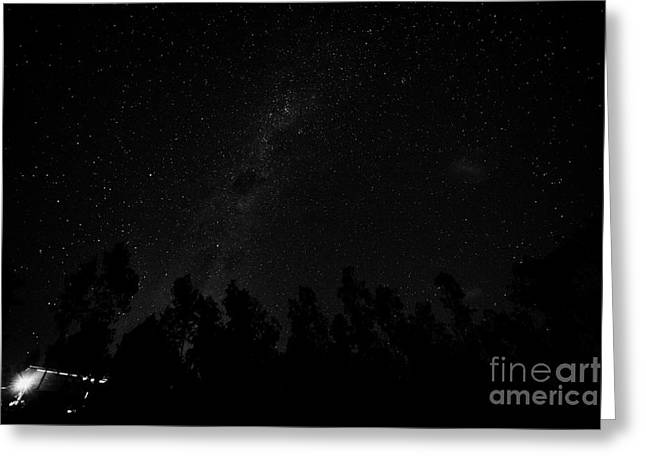 Night Forest Greeting Cards - Milky Way And Stars In The Sky Over Woods In Los Pellines Chile Greeting Card by Joe Fox