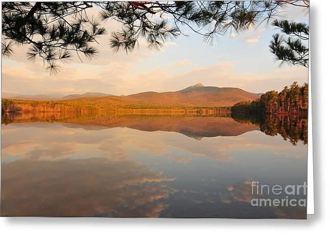 Late Fall Greeting Cards - Mount Chocorua Greeting Card by Catherine Reusch  Daley