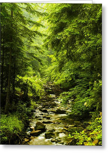 Background Greeting Cards - Mountain stream Greeting Card by Jaroslaw Grudzinski