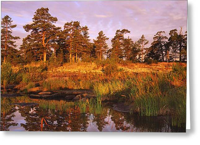 Reflecting Water Greeting Cards - National Park VALAAMSKY Greeting Card by Anonymous