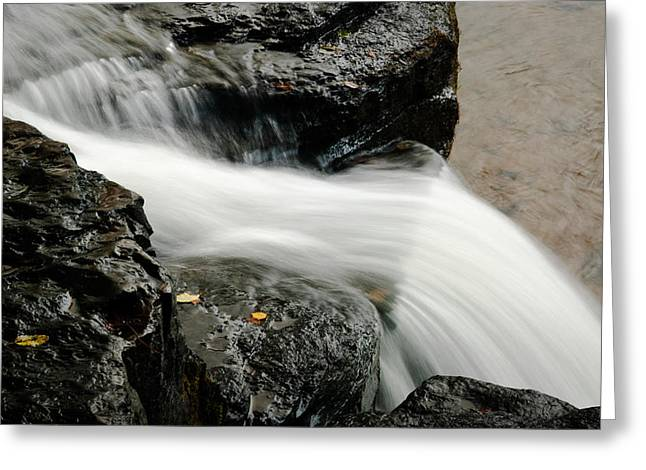 Natural Dam Arkansas Greeting Cards - Natural Dam Detail Greeting Card by Terry Olsen