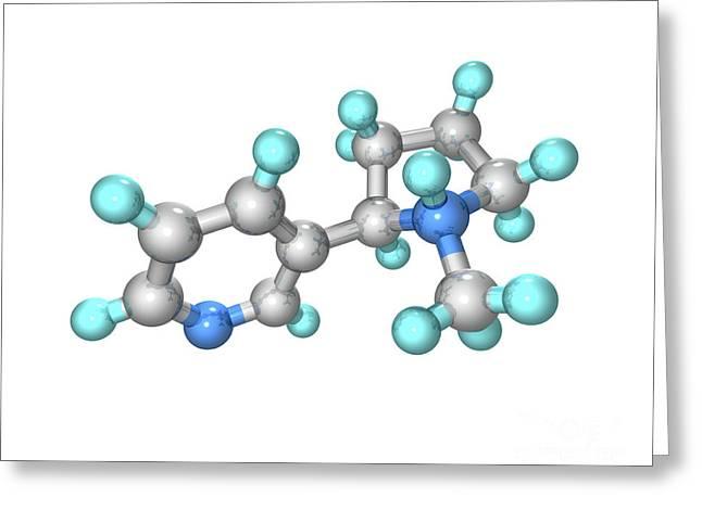 Addictive Drug Greeting Cards - Nicotine Drug Molecule Greeting Card by Laguna Design