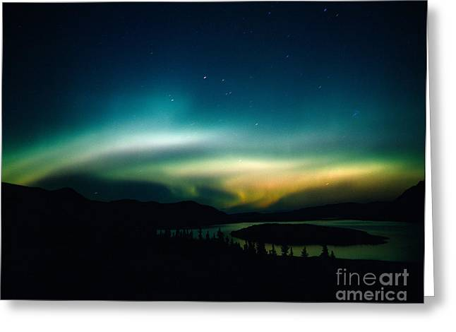 Northern Polar Lights Greeting Cards - Northern Lights Over Bove Island Greeting Card by Tracy Knauer