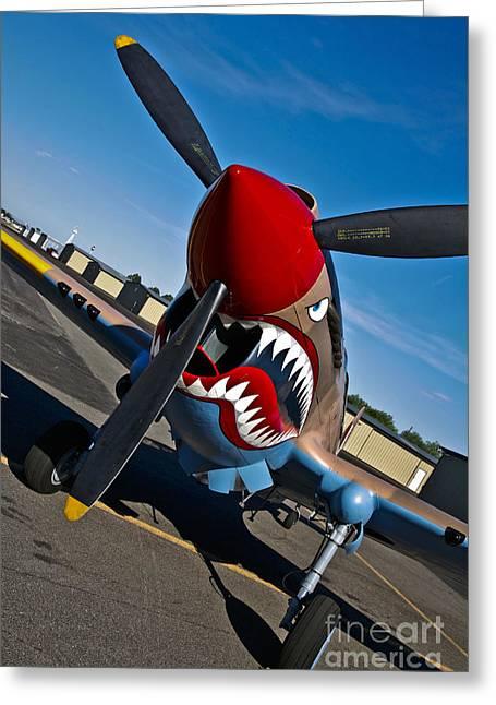 Curtiss Kittyhawk P-40 Greeting Cards - Nose Art On A Curtiss P-40e Warhawk Greeting Card by Scott Germain
