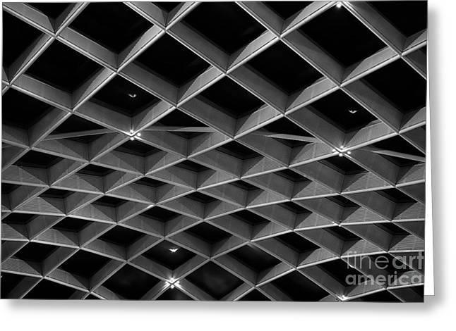 Curvilinear Greeting Cards - Nurb Skylight Structure Greeting Card by Lynn Palmer