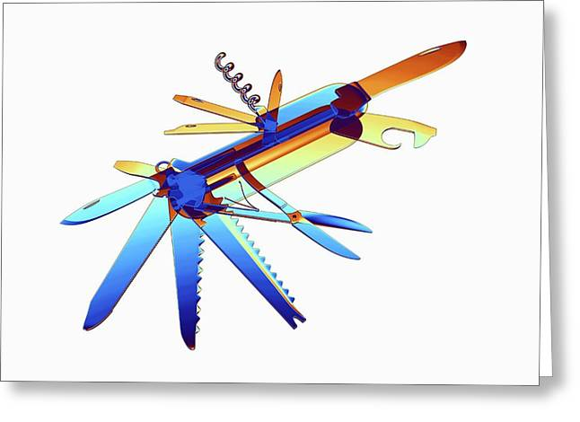 Penknife Greeting Card by Alfred Pasieka
