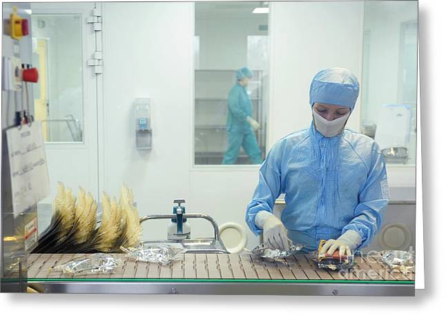 Manufacturing Greeting Cards - Pharmaceutical Factory Greeting Card by Ria Novosti