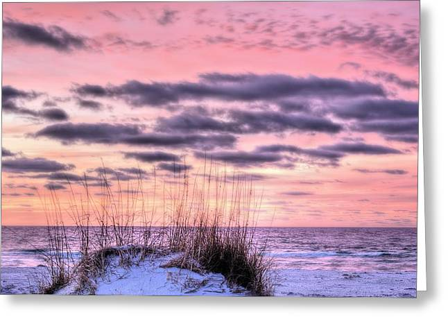 Florida Panhandle Greeting Cards - Pink Greeting Card by JC Findley