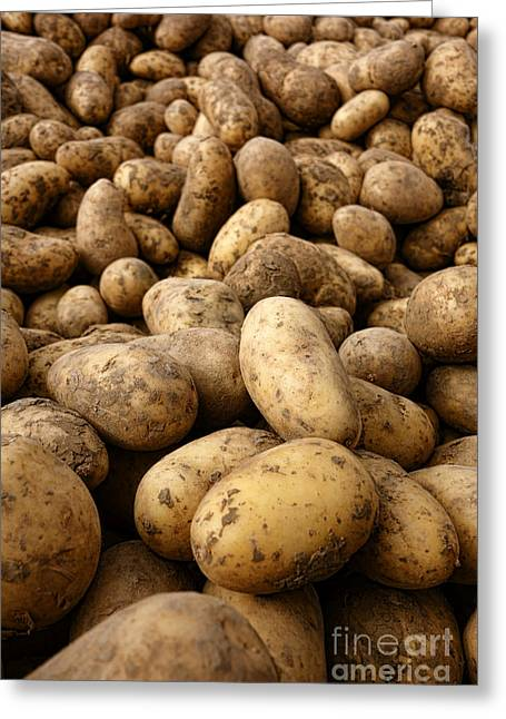 Organic Photographs Greeting Cards - Potatoes Greeting Card by Olivier Le Queinec